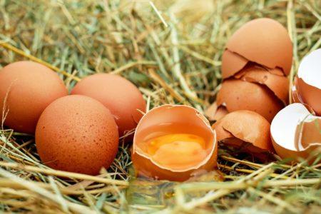 完全食?!な卵=手軽に1日1個を