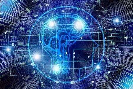 脳の健康について